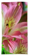 Peruvian Lilies In Bloom Beach Towel