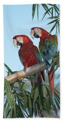 Red-and-green Macaw Photographs Beach Towels