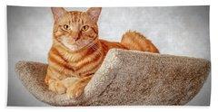 Red Cat Beach Sheet