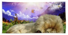 Beach Towel featuring the digital art Rest  by Dolores Develde