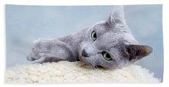 Russian Blue Cat Beach Towel