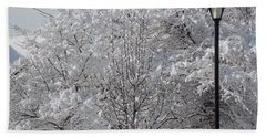 Snow Covered Trees Beach Towel by Catherine Gagne