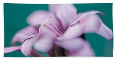 Beach Towel featuring the photograph Soft Pink by Michaela Preston