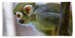 Squirrel Monkey Beach Towel by Afrodita Ellerman