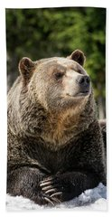 The Grizzly Bear Grinder Beach Towel