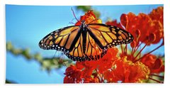 Beach Sheet featuring the photograph The Resting Monarch by Robert Bales