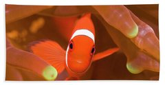 Tropical Fish Clownfish Beach Towel