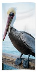 Portrait Of A Pelican Beach Towel by Catherine Lau