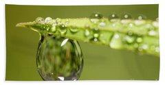 Water Drops On The Grass Beach Sheet