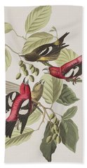 White-winged Crossbill Beach Towel by John James Audubon