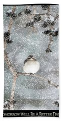 Winter Mockingbird Beach Sheet