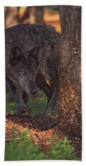 Beach Towel featuring the photograph Zaltana  by Brian Cross