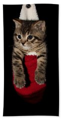 2010 Stocking Cat 2 Beach Towel