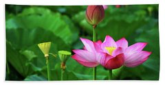 Blossoming Lotus Flower Closeup Beach Towel