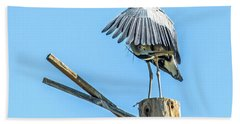 Great Blue Heron Beach Towel by Tam Ryan