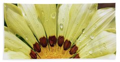 Beach Sheet featuring the photograph Nice Gazania by Elvira Ladocki