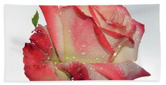 Nice Rose Beach Towel by Elvira Ladocki