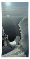 2m4415 A Ice Covered Trees Over Puget Sound Beach Towel