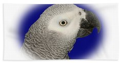 Beach Towel featuring the photograph African Grey Parrot  by Debbie Stahre