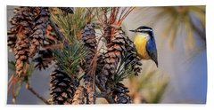 Black-capped Chickadee Beach Towel