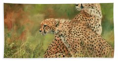 Cheetahs Beach Towel by David Stribbling