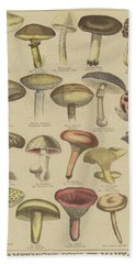 Edible And Poisonous Mushrooms Beach Towel by French School