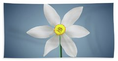 Beach Towel featuring the photograph Flower Paradise by Bess Hamiti