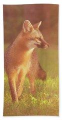 Fox Beach Towel