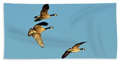 3 Geese In Flight Beach Towel