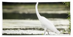 Beach Sheet featuring the photograph Great Egret  by Ricky L Jones