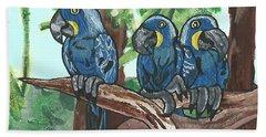 3 Macaws Beach Towel