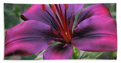 Nice Lily Beach Towel by Elvira Ladocki