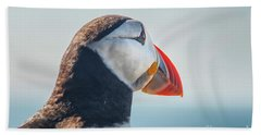 Beach Towel featuring the photograph Puffin In Close Up by Patricia Hofmeester