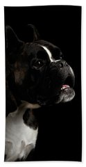 Beach Towel featuring the photograph Purebred Boxer Dog Isolated On Black Background by Sergey Taran