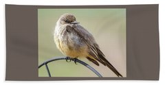 Say's Phoebe Beach Towel