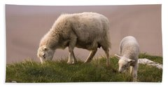 Welsh Lamb Beach Towel