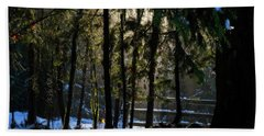 Beach Towel featuring the photograph Winter Light  by Inge Riis McDonald