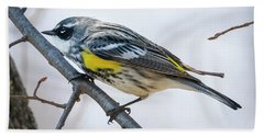 Beach Towel featuring the photograph Yellow-rumped Warbler  by Ricky L Jones