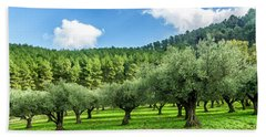 Young Olive Grove Beach Towel