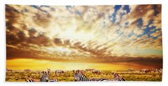 Zebras Herd On African Savanna At Sunset. Beach Towel by Michal Bednarek