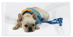3010.066 Therapet Beach Towel