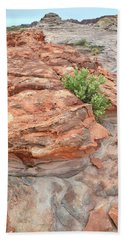 Colorful Sandstone In Valley Of Fire Beach Sheet