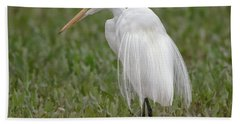 Great Egret Beach Towel by Tam Ryan