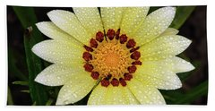 Nice Gazania Beach Towel