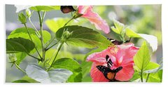 Cream-spotted Clearwing Butterfly Beach Towel