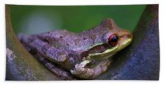 Frog Beach Sheet