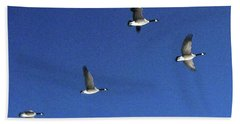 4 Geese In Flight Beach Towel
