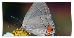 Hairstreak Beach Sheet