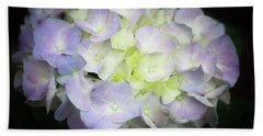 Hydrangea Beach Sheet by Cathy Donohoue
