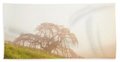 Beach Towel featuring the photograph Miharu Takizakura Weeping Cherry05 by Tatsuya Atarashi